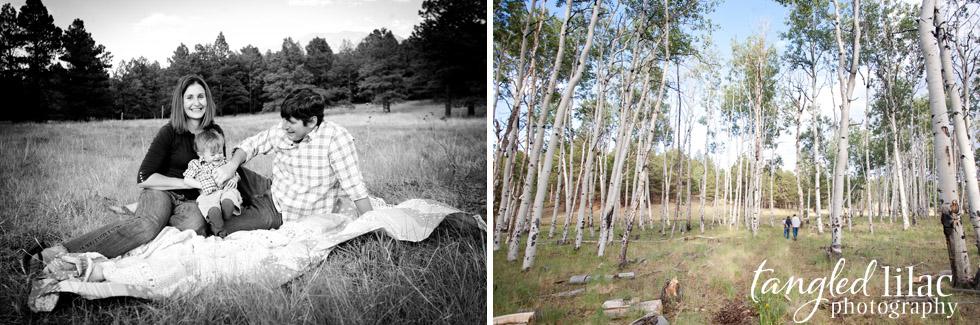 summer, flagstaff, photography