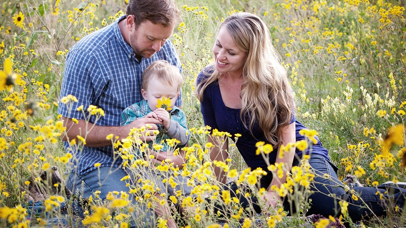 Flagstaff Sunflower Family Photos