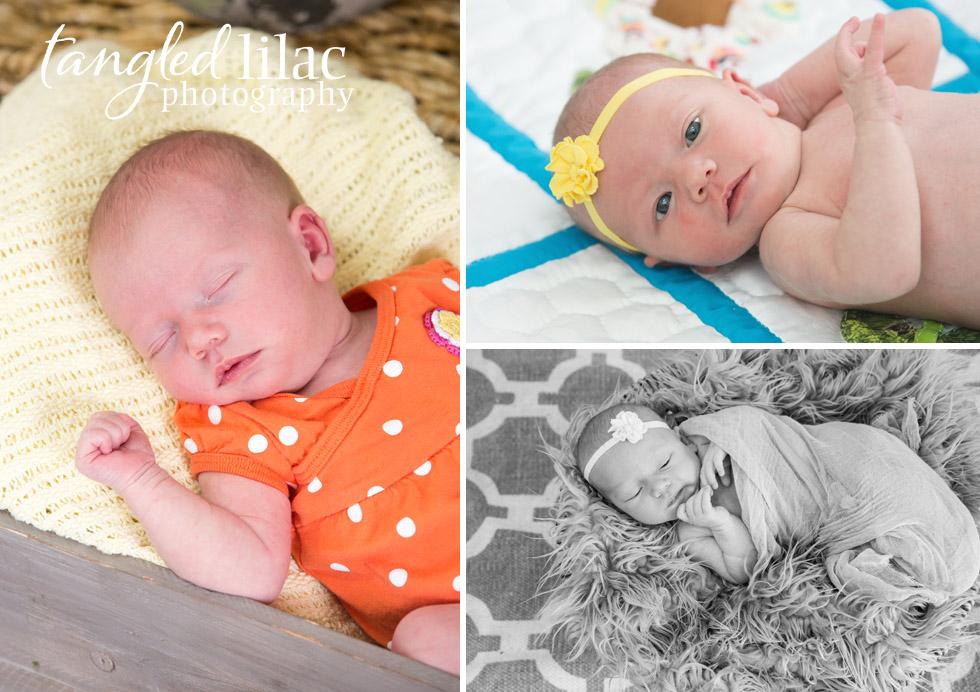 newborn-flagstaff-photography-orange-basket
