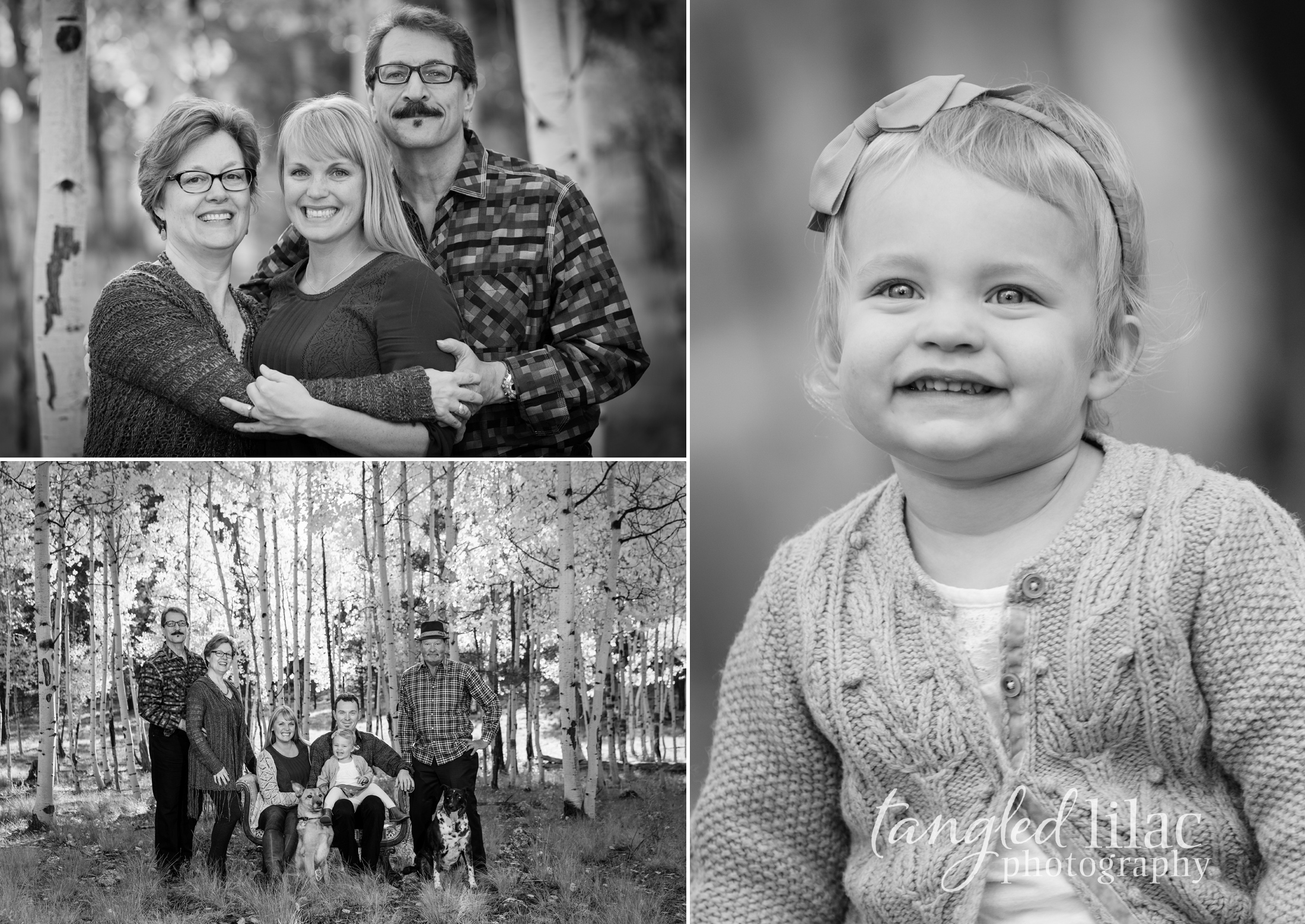 105-flagstaff-family-photographer-aspens-dogs-pets