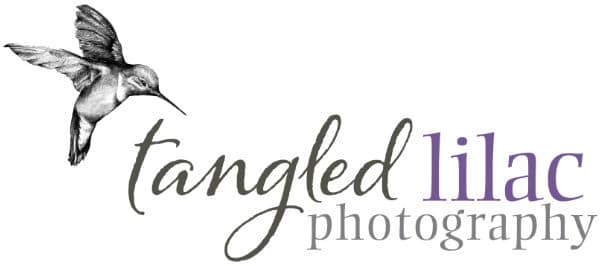 Pet Photographer and Headshot Photographer | Tangled Lilac Photography