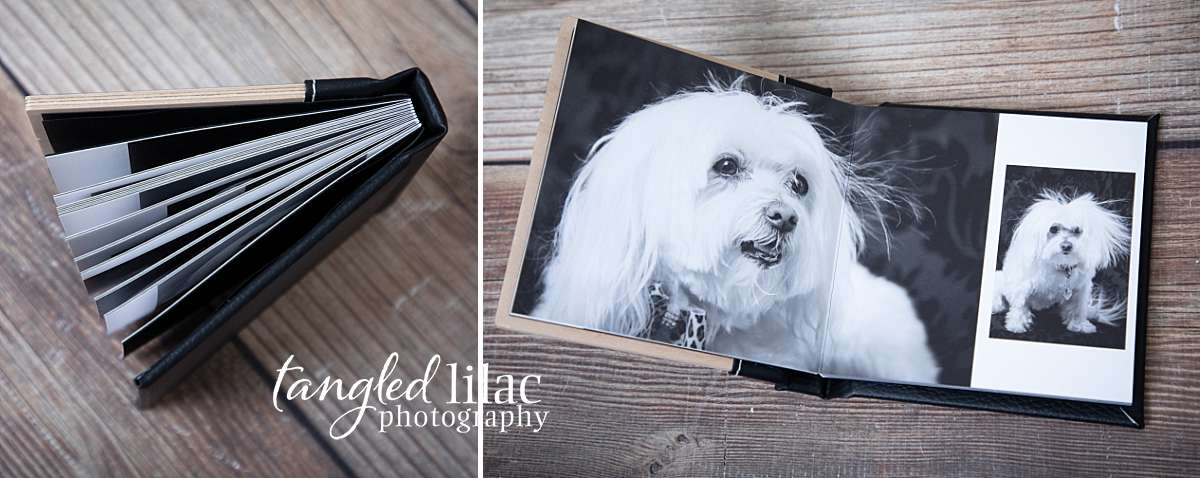 Fine Art Albums Pet Photography