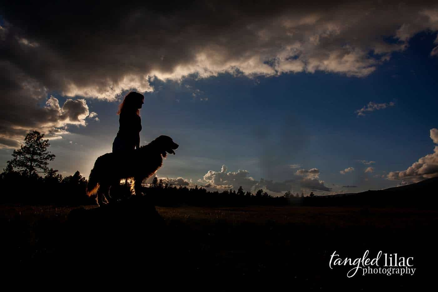 Silhouette portrait of rescue golden retriever dog and owner at sunset in Los Angeles
